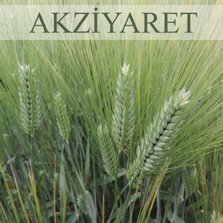 olgunlar-AKZYARET